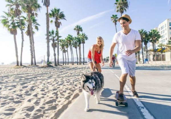 10 raisons de promener votre chien