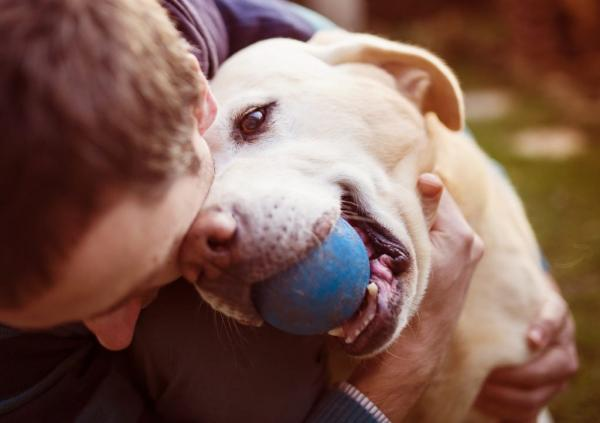 5 choses que votre chien dit de vous