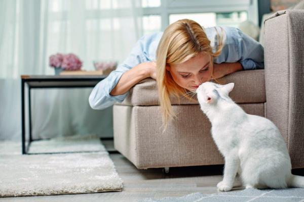 7 choses que votre chat sait sur vous