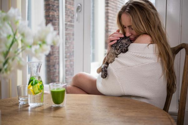 7 erreurs courantes lors de l'élevage d'un chat