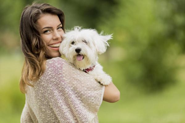 Astuces pour empêcher mon chien de sentir mauvais