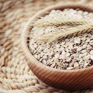 Avantages de la farine d'avoine pour les chiens