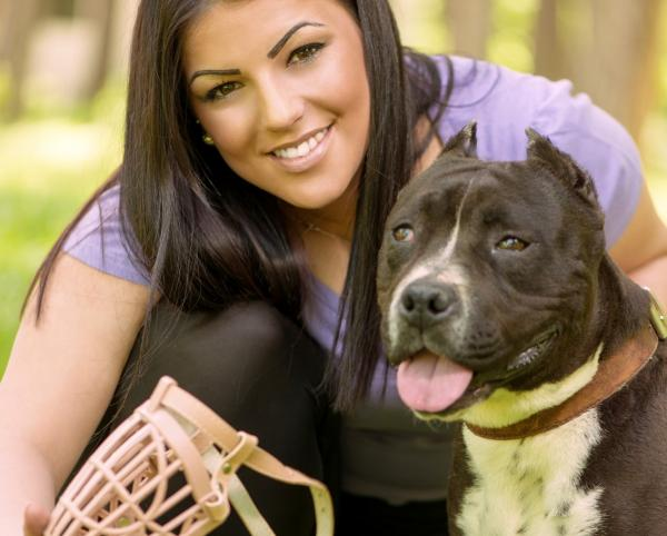 Comment habituer un chien au museau?