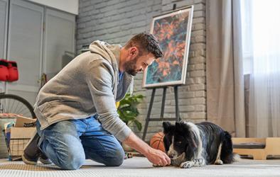 """comment apprendre à un chien à """"ramper"""""""