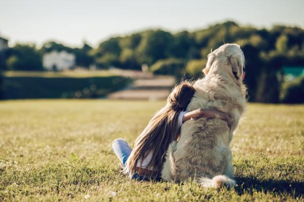 Les 20 meilleures races de chiens pour les enfants