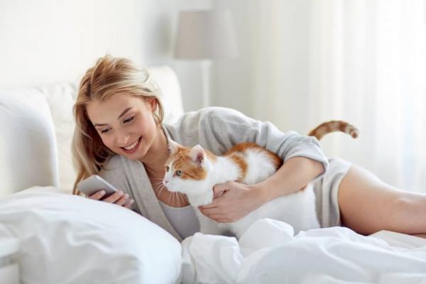 Les avantages d'avoir un chat à la maison