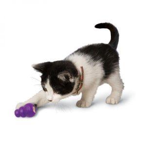 Les meilleurs jouets distributeur de nourriture pour chat