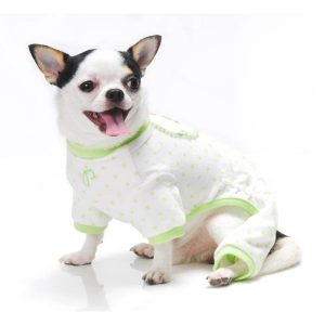 Petits vêtements pour chiens - Galerie d'images