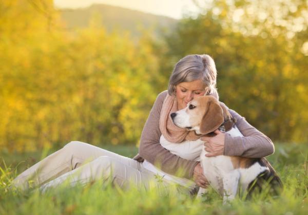 Pourquoi adopter un chien âgé?