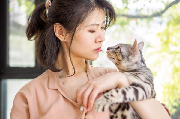 Pourquoi mon chat sent-il mon nez?