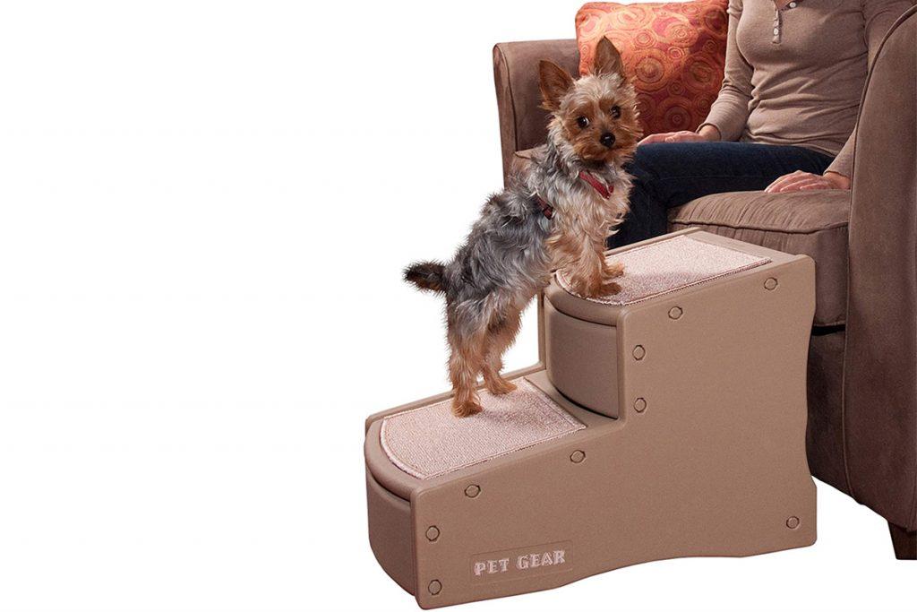 🏆 Meilleurs escaliers pour les PETITS chiens : lequel dois-je choisir pour mon chien ?