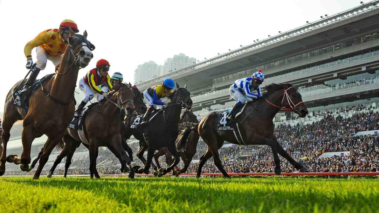 Scandale dans le monde des chevaux: dopage pour animaux, écuries saisies
